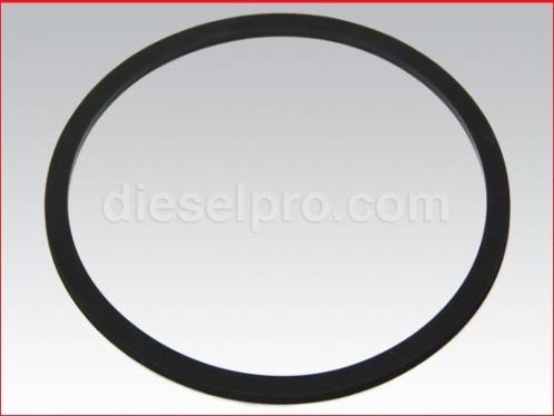 Piston ring seal